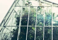 The Basics of Building Your Own Greenhouse