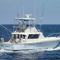 Things to Know About Fishing Charter