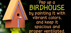 Unique and Decorative Birdhouse Ideas for Your Feathered Friends