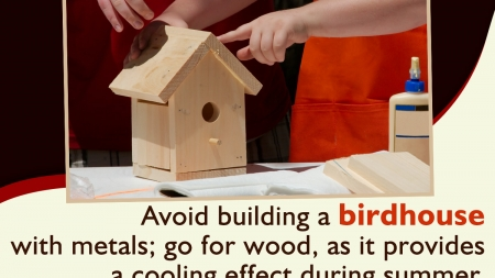 Learn How to Build a Birdhouse to Ensure a Lovely Haven for Birds