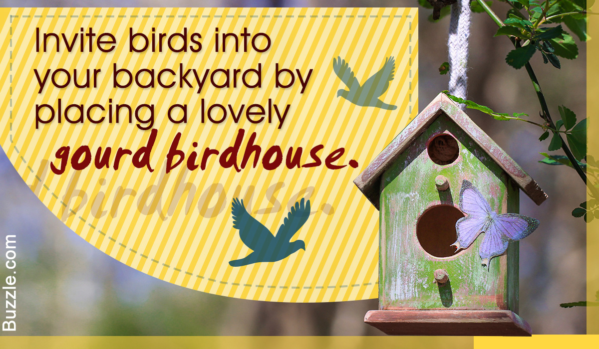 Amazingly Simple and Fun Ways of Turning Gourds Into Birdhouses