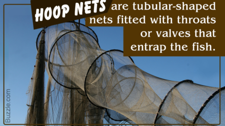 Various Types of Commercial Fishing Nets You Need to Know About