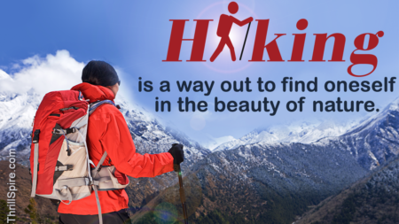 Why Do People Actually Go Hiking? 4 Reasons That Sum it Up