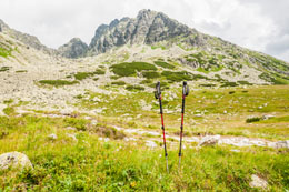 The Perfect Guide on How to Properly Use Trekking Poles