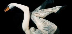 Stunning Body Art Illusions by Gesine Marwedel