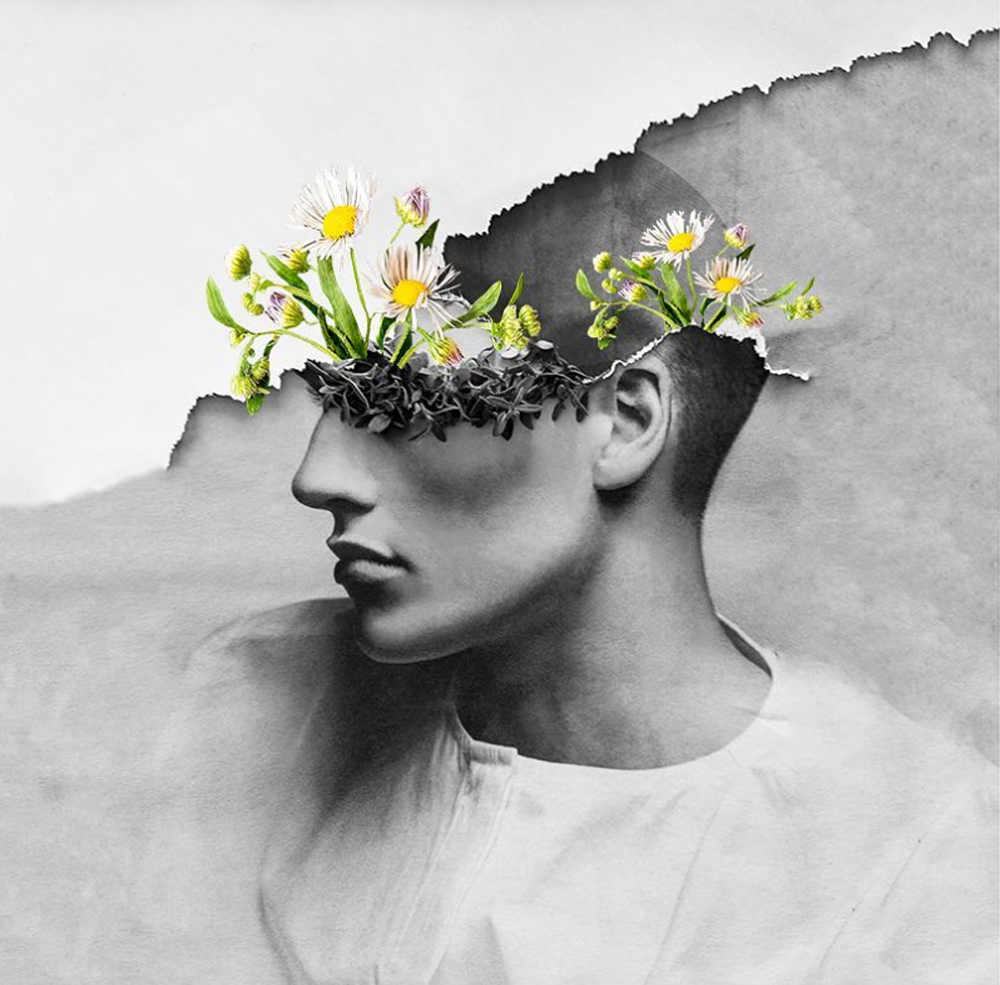 Graceful Flowery Collages by Maja Egli