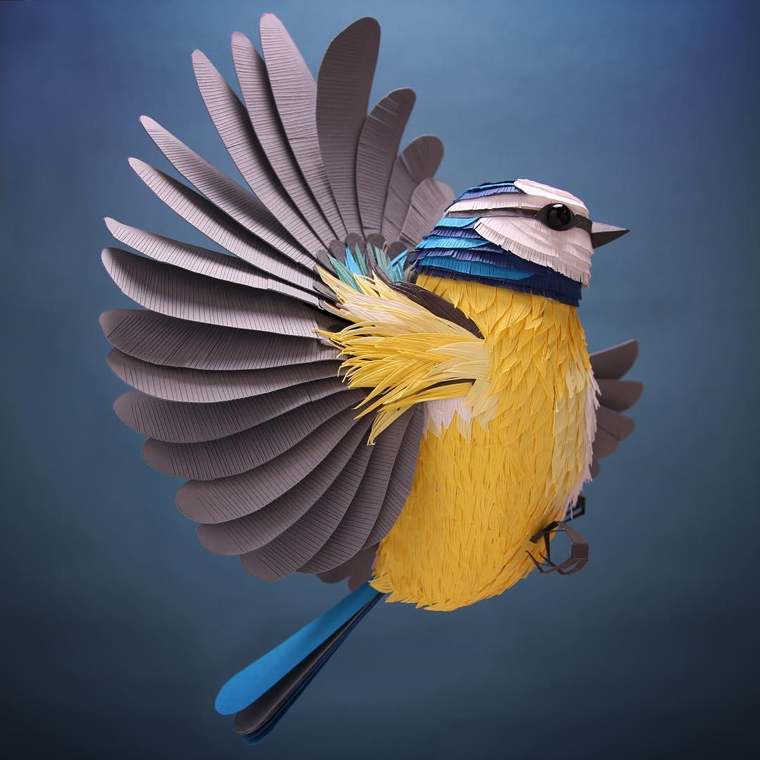 3D Paper Sculptures by Lisa Lloyd
