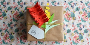 frankie exclusive diy: native flora gift decoration