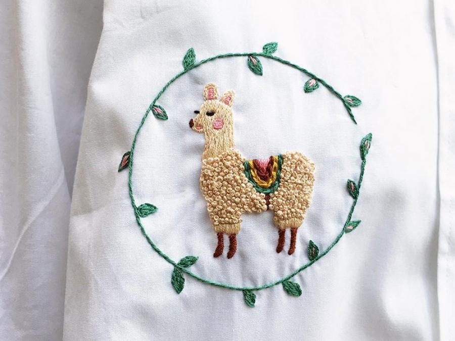 put an alpaca on it